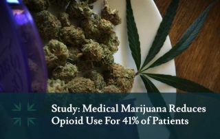 medical marijuana opioid use