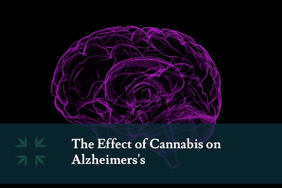 effect cannabis alzheimers