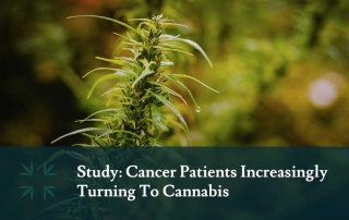 study cancer patients using cannabis