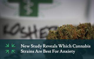 best cannabis strains anxiety