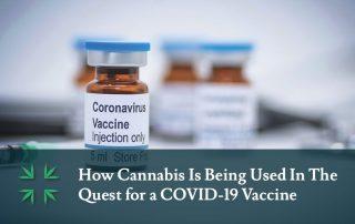 cannabis covid 19 vaccine