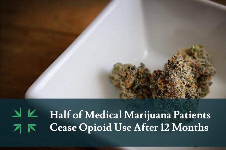 Half of Medical Marijuana Patients Ceases Opioids After 12 Months